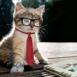 ネクタイをクリーニングに出す頻度とシミ抜きの料金の相場は?