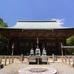 京都醍醐寺の桜の見頃はいつ?桜の開花予想と夜桜ライトアップ時間