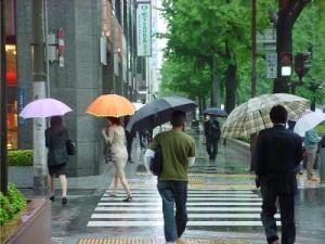 rainyseason-moisture