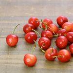 福島のさくらんぼ狩りおすすめの時期と会津若松市の人気果樹園とは