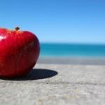 りんご病で学校や保育園を休む期間やプールやお風呂は問題ない?