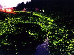 okayama-hokubou