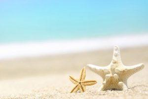 砂浜とひとで