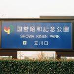 昭和記念公園ひまわり2018の見頃と開花状況!アクセスと駐車場