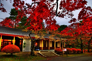 函館市見晴公園・香雪園の紅葉2016の見頃時期とライトアップはいつから?