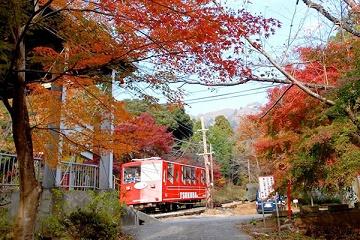 筑波山紅葉2016のライトアップと見ごろは?もみじまつり情報も!