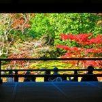 天龍寺紅葉2016見頃時期と秋の特別参拝(雲竜図毎日公開)は?