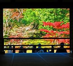 tenryuji-autumn-leaves